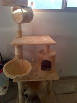 Cat Scratching Tree Post Brand New Unused - Huge Over 5 feet tall - Great Deal! Won't Last Long! in 29 Palms, California