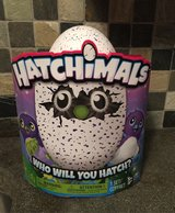 Hatchimals - Draggle Purple/Blue ! in Bolingbrook, Illinois