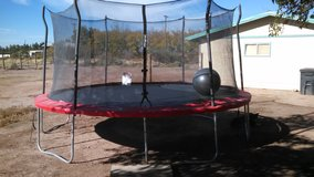Propel 15' round trampoline in Alamogordo, New Mexico