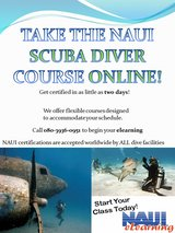 SCUBA DIVER CERTIFICATION IN AS LITTLE AS TWO DAYS! in Okinawa, Japan