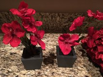Artificial plants - red in Phoenix, Arizona