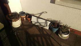 Plants & pots with dirt in Ramstein, Germany