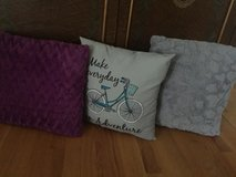 3 free throw pillows **pending p/u in Glendale Heights, Illinois