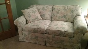 Love Seat/Sofa bed in Naperville, Illinois