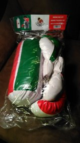 New Boxing Glove Set in Kingwood, Texas