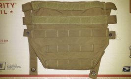S-SAPI Side Plate Carriers in Oceanside, California