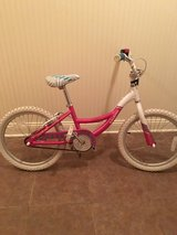 Raleigh girls bike in Aurora, Illinois