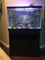 65 gallon salt water tank in Columbus, Georgia