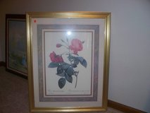 FRAMED LRG PICTURE/ GLASS in Morris, Illinois