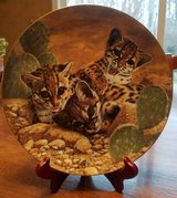 Decorative Plate - 1 of 6 Small Wonders of the Wild I have for sale - Eye of Wonder in Algonquin, Illinois