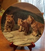 Decorative Plate - 1 of 6 Small Wonders of the Wild plates I have for sale - Three of a Kind in Algonquin, Illinois