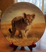 Decorative Plate - 1 of 6 Small Wonders of the Wild plates I have for sale - Young Explorer in Chicago, Illinois