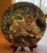 Decorative Plate - 1 of 6 Small Wonders of the Wild plates I have for sale - Hideaway in Algonquin, Illinois