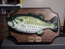 Bass Fish on plack in Dickson, Tennessee