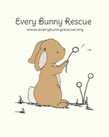 Every Bunny Rescue accepting Take ins in Camp Lejeune, North Carolina