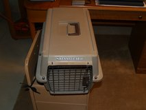 Cat Carrier in Naperville, Illinois