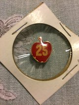 Vintage 25 yr Apple pin in 29 Palms, California