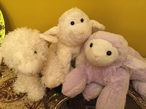 Lot of stuffed animals lambs for Easter baskets in Joliet, Illinois