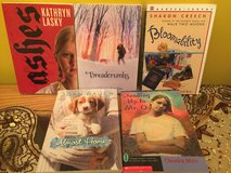 Lot of new preeteen girls chapter books in Naperville, Illinois
