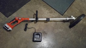 Battery-powered lawn trimmer and edger in Elgin, Illinois