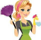House Cleaning Services in Naperville, Illinois