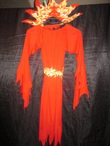 *** 50% off *** Fancy dress / carnival costume: Fire witch in Ramstein, Germany