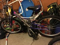 Girls bike in Batavia, Illinois