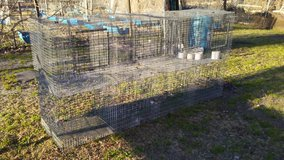 Rabbit cages & More in Camp Lejeune, North Carolina
