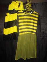 Fancy dress / carnival costume: Bee in Ramstein, Germany