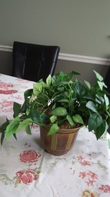 Fake leaf potted decor in Lockport, Illinois