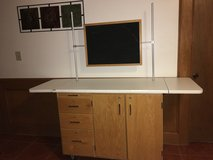 Science Lab Demonstrator Cabinet/Table in Liberty, Texas