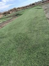 Just in! Beautiful Recycled Artificial Grass in Sacramento, California