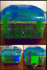 Hamster/Gerbil Cage in Chicago, Illinois
