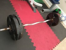 EZ Curling Bar/ Weights in Beaufort, South Carolina
