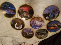 Wild cats collector plates in Nellis AFB, Nevada