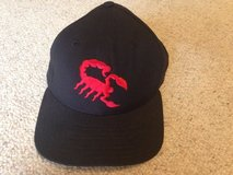 Scottsdale Scorpions baseball hat in Westmont, Illinois
