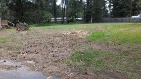 1/3 Acre Lot in Lake Conroe Community in Conroe, Texas