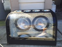 """2 Kenwood 10"""" subs subwoofers 10s tens in Fairfield, California"""