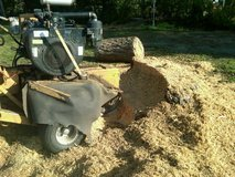 Scott's Stump Grinding in Cherry Point, North Carolina