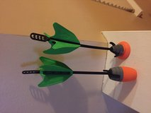 Nerf arrows in Naperville, Illinois