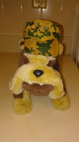 STUFFED BULL DOG in Schofield Barracks, Hawaii