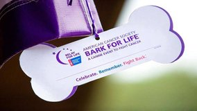5K Dog Walk/Run Bark for Life 2019 Event in Dover, Tennessee