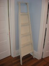 Leaning Wooden Ladder Display shelf in Morris, Illinois