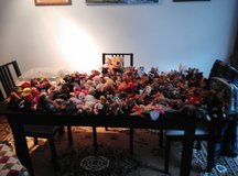 100+ Beanie Babies all Original and NM-MT condition in Ramstein, Germany