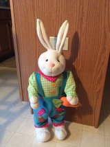 Easter Bunny in Aurora, Illinois
