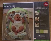 Ingenuity- Smart Bounce -Automatic Bouncer in Naperville, Illinois