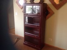 Lawyer/ Barrister Bookcase and Office armoire in Bartlett, Illinois