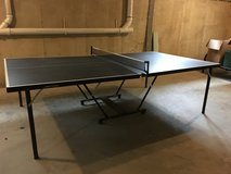 Pin pong table in Glendale Heights, Illinois