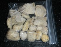 Fossil Rock Collection Turritella Sand Dollar Sea Shells + More in Houston, Texas