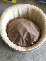 Small dog bed in Houston, Texas
